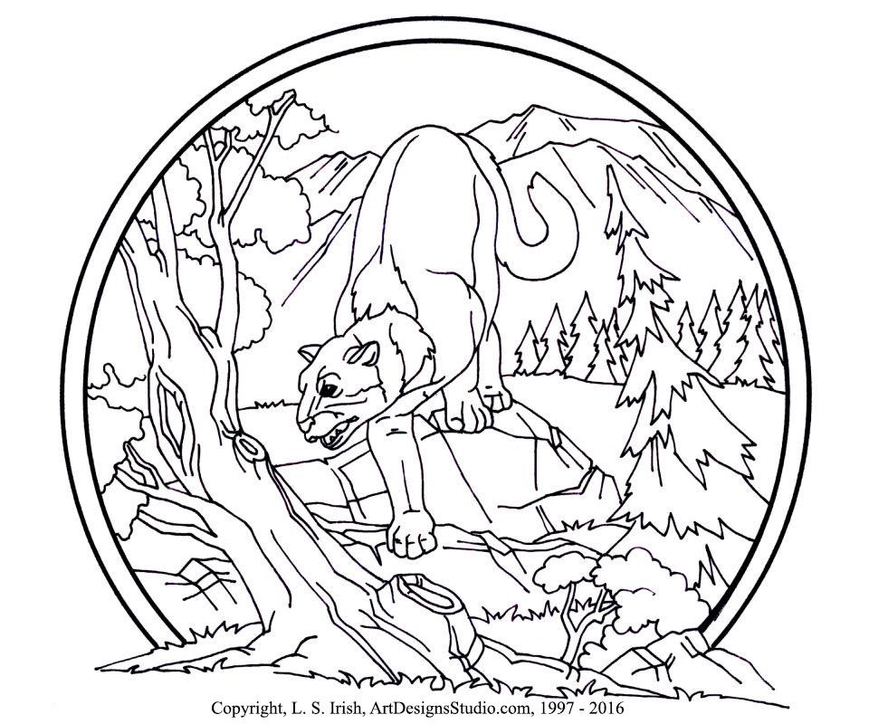 LSIrish-cougar