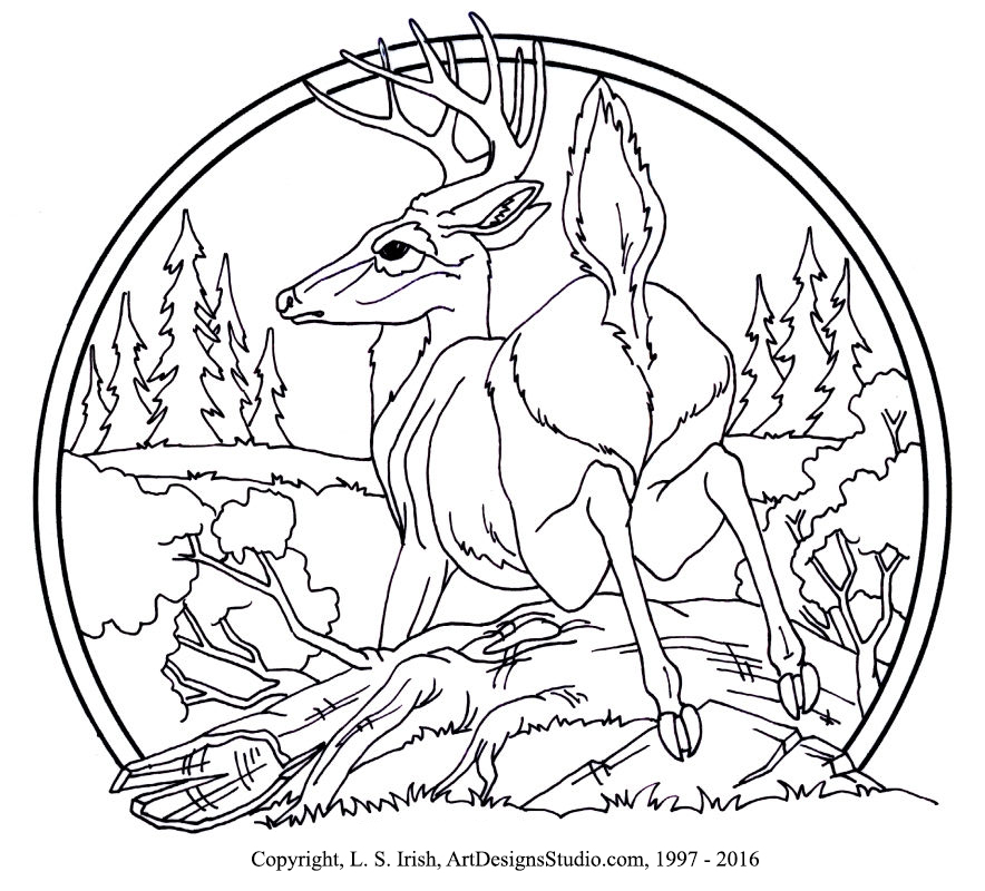 LSIrish-deer